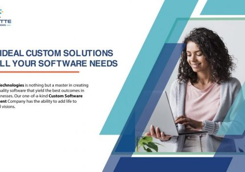 The Ideal Custom Solutions to all Your Software Needs