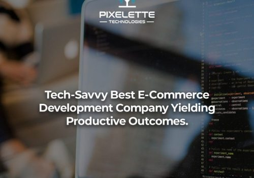 Tech-Savvy Best E-Commerce Development Company Yielding Productive Outcomes