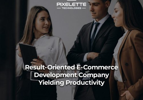 Result-Oriented E-Commerce Development Company Yielding Productivity