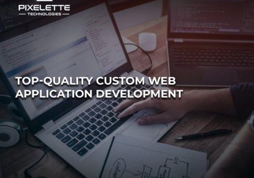 Custom Website Application Development Services | Pixelette Technologies