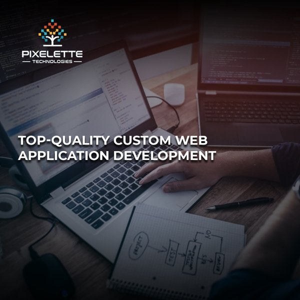Custom Web Application Development Services | Pixelette Technologies