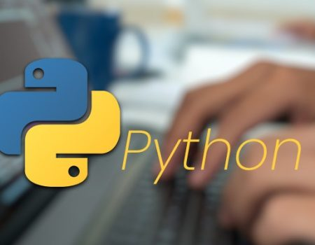 What a python development company can do for you.